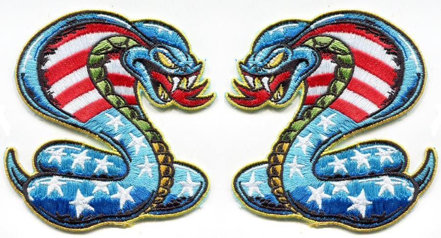 Dirty Donny Stars and Bars Cobra Patch SET
