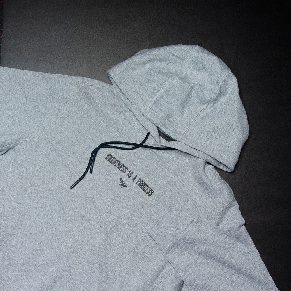 Rocnation Greatness Hoodie (Grey)