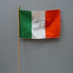 RIN 4in. x 6in. Irish Flag