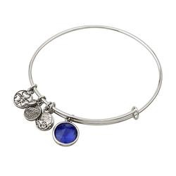 Rhodium Birthstone September Charm Bangle
